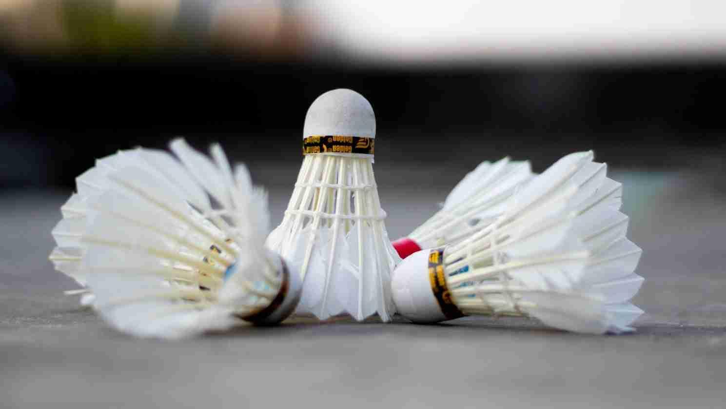 Badminton Club (South)